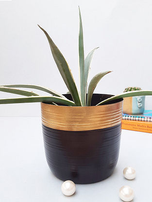 Black And Gold Metal Desk Planter (D-6in, H-7in)