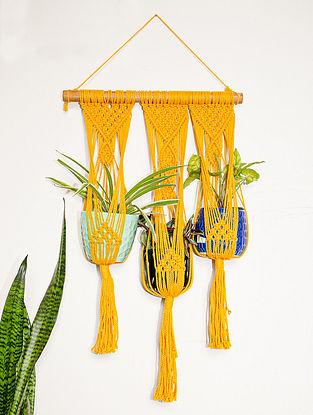 Mustard Macrame Hanging Triple Plant Holder (L-34in ,W-18in)