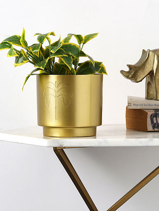 Brass Iron Planter with Motif (L-6in, W-6in,H-5.5in)