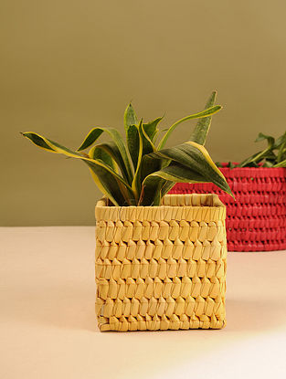 Palm Leaf Yellow Square Planter Box (L - 6in, W - 6in, H - 5.5in)
