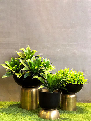 Gold and Black Totem Planter (L-12in W-12in H-12in)