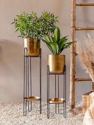 Gold Leo Planter (L-7.87in W-7.87in H-31.49in)