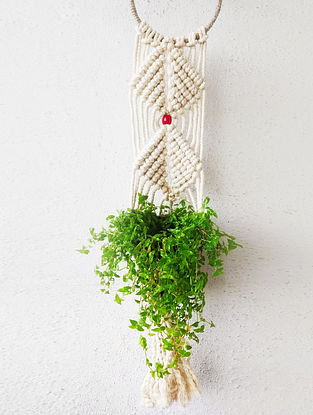 Off white Macrame Cotton Pot Holder With Wood Beads And Steel Ring (30in x 6in)
