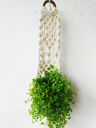 Off-White Macrame Cotton Pot Holder with Wood Ring (L - 26in)