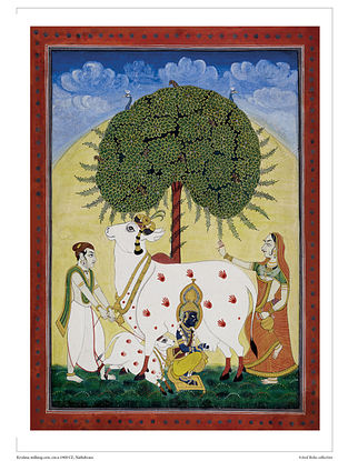 Krishna Milking cow Digital Print on Paper (16.5in x 12.5in)