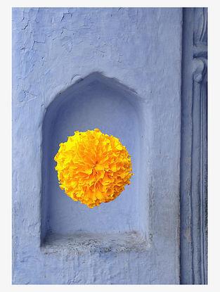 Marigold Rajasthan Art Print on Paper