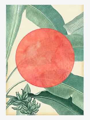 Tropical Banana Art Print On Paper