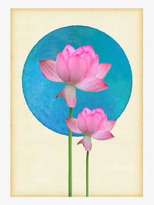 Blossom Art Print On Paper