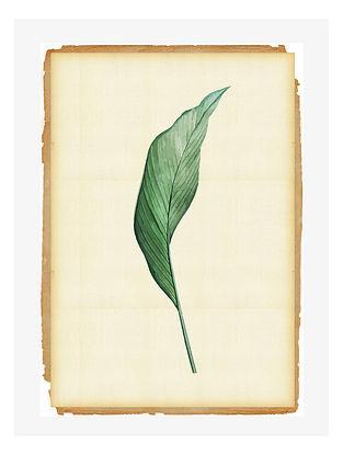 Leaf Life Digital Mix Media Art on Paper