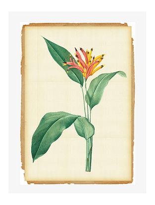 Botanical Digital Mix Media Art on Paper