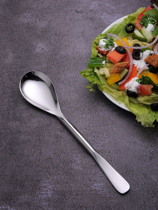 Silver Stainless Steel Serving Spoon (Set of 6) (9.2in x 1.7in)