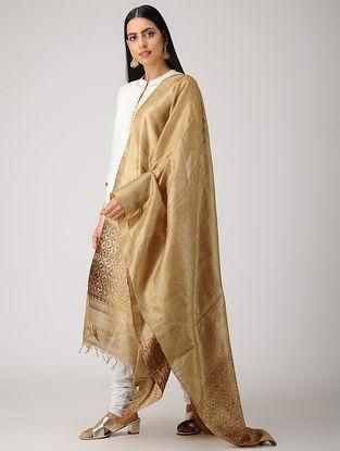 Beige-Maroon Sozni-embroidered Tussar Silk Dupatta