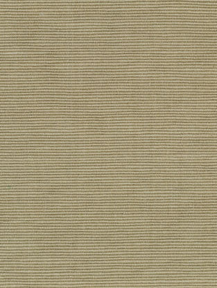 Sage Cotton Bamboo Regular Solid Fabric