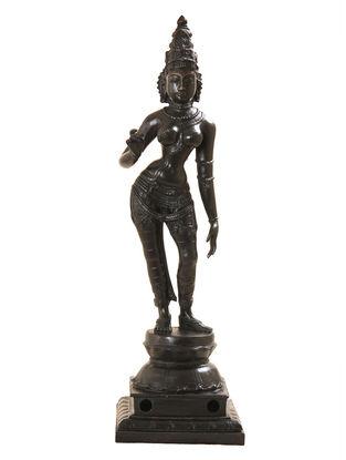 Parvathi Black  Bronze Statue - 16 Inch
