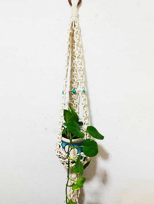 Off-White Macrame Cotton Pot Holder with Wood Beads (38in x 7in)