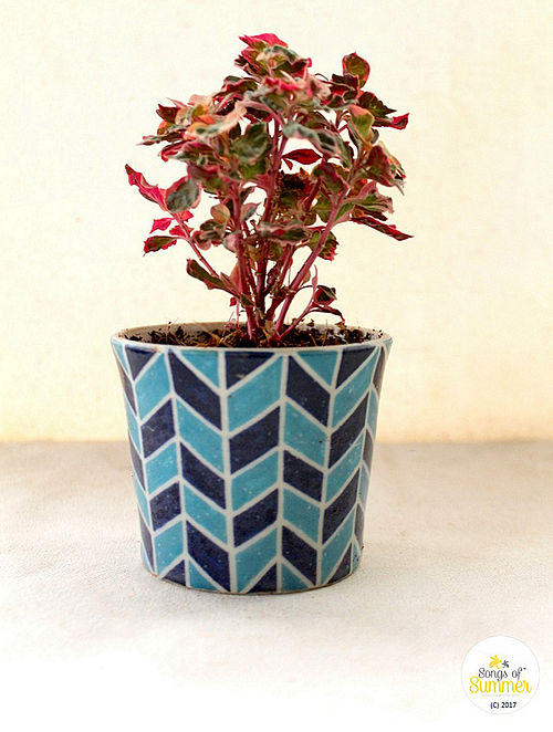 Blue Barley Turquoise and Cobalt Stoneware Planter (Dia :3.75in, H:3.25in)