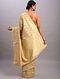 Golden Handwoven Benarasi Cotton Saree