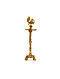 Peacock Brass Lamp (L-4in, W-4in, H-12.5in)